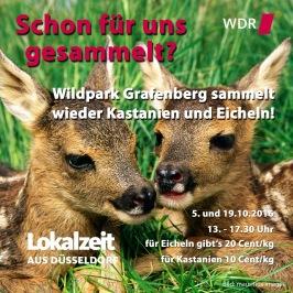 Photo WDR