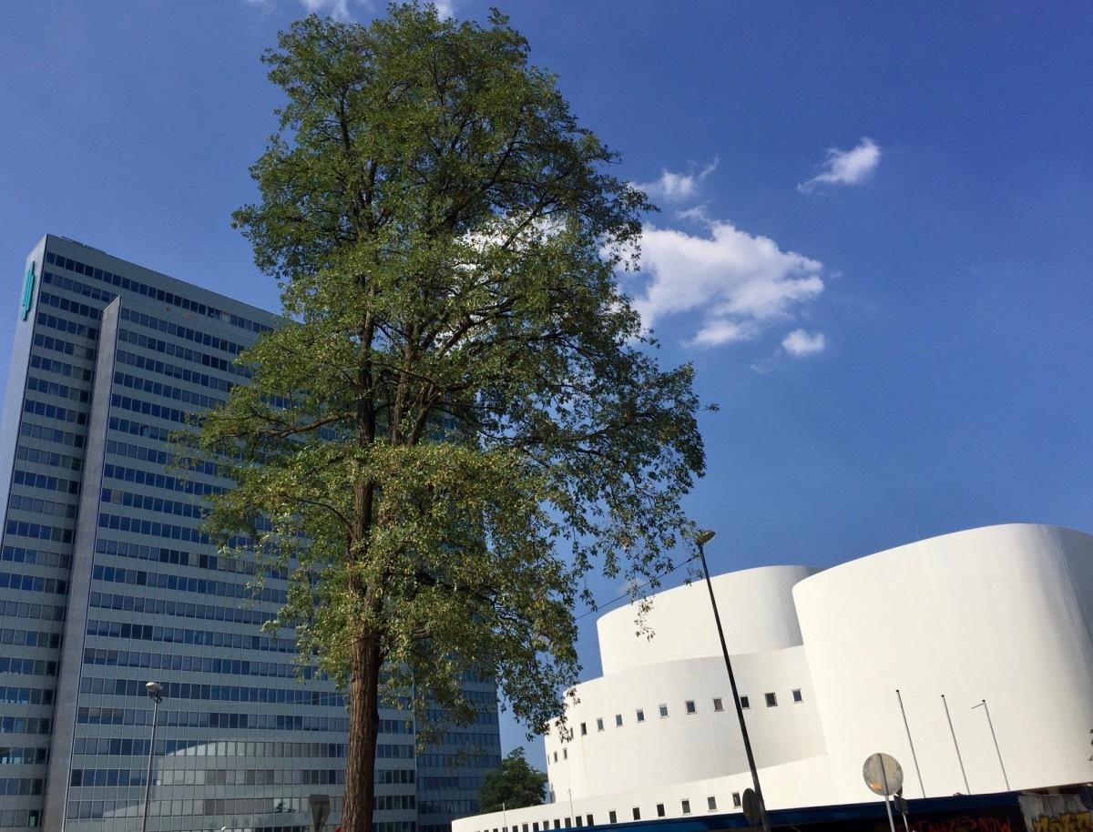 Le devenir de la Düsseldorfer Schauspielhaus, un sujet bouillant !