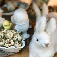 Joyeuses Pâques - Frohe Ostern !