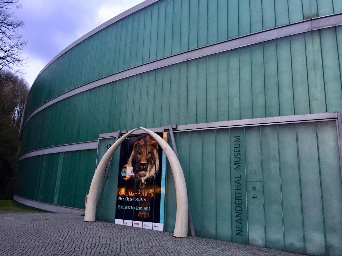 Le Neanderthal Museum, un voyage au pays de l'homme !